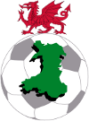 Voetbal - Welsh Premier League - 2016/2017 - Home