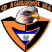 CD Aguiluchos USA